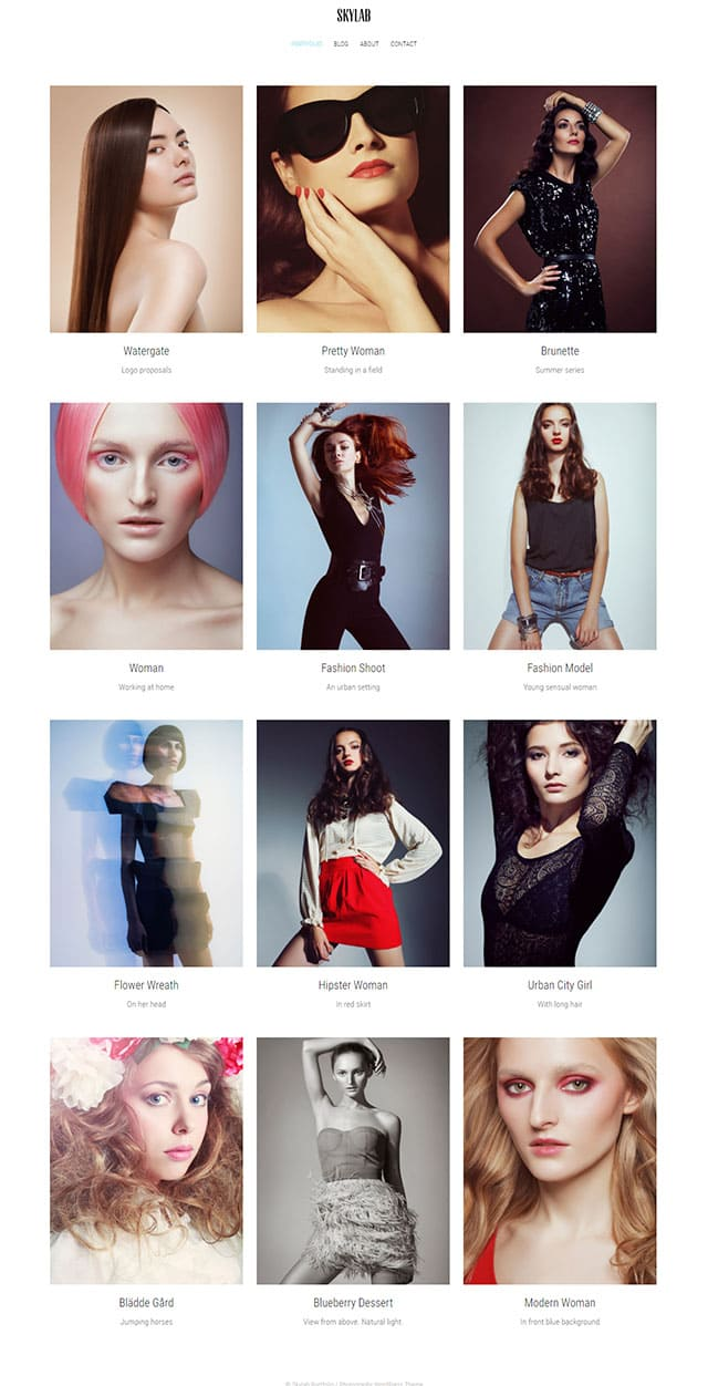 Skylab – Portfolio / Photography Wordpress Theme