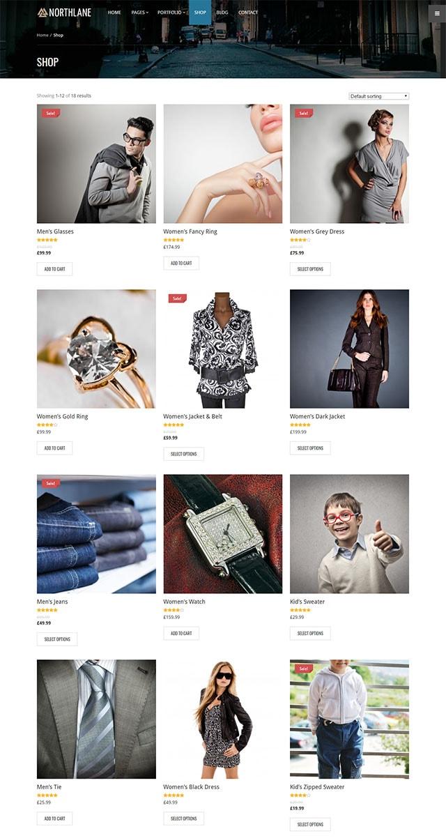 Northlane - eCommerce WordPress Theme